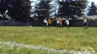 Kalli's First Soccer Game Against The Golden Retrievers