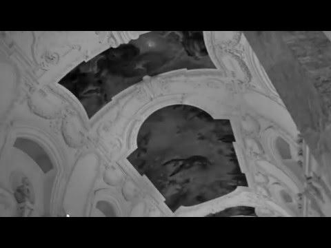 Maxence Cyrin - Le courage des oiseaux - Live au Petit Palais 2016