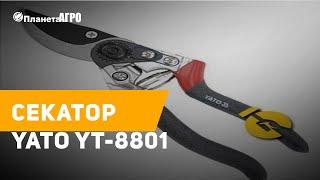 Секатор YATO YT-8801. Краткий обзор