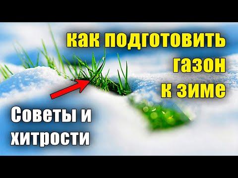 Вопрос: Косить траву на участке перед зимой?