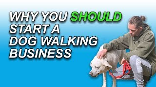 Why You SHOULD Start A Dog Walking Business In 2020