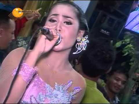 Cinta Merah Jambu - Campursari Supra Nada - Live In Pondok Terbaru
