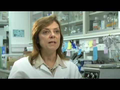 Cytogenetic Biomarker Assays For Cancer Risk Assessment And Detection