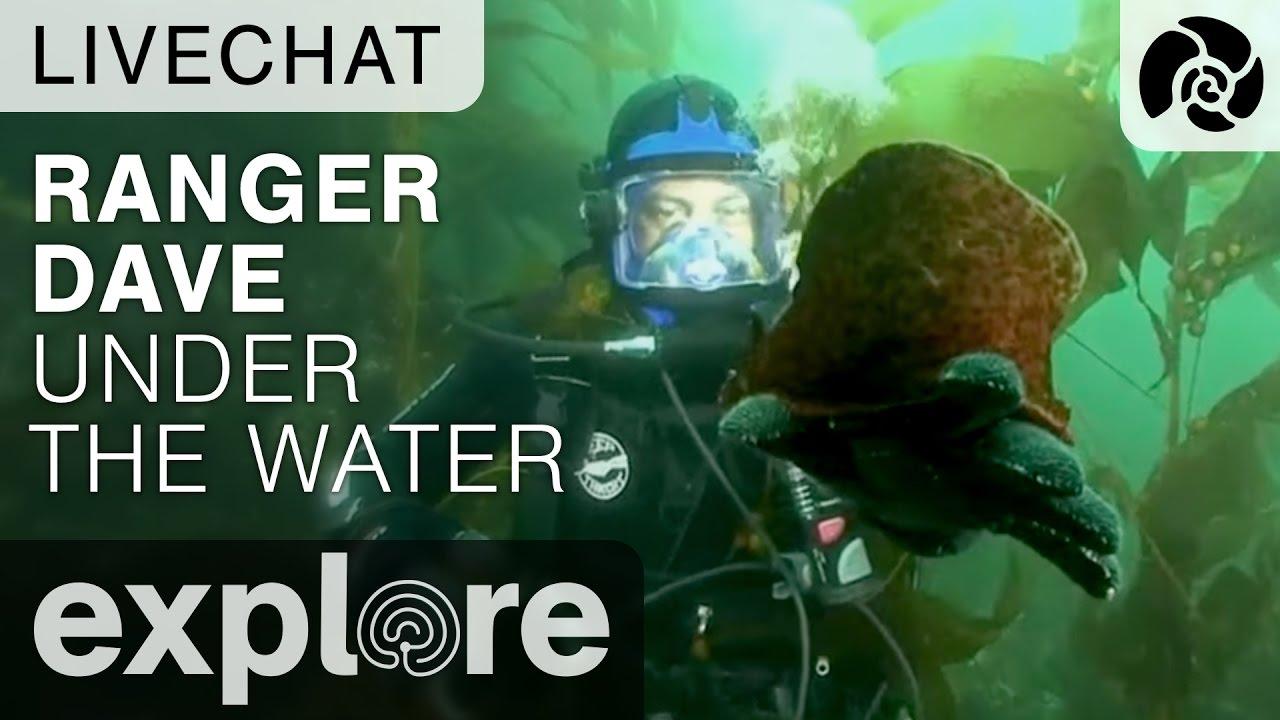 Ranger Dave Under The Ocean - Underwater Live Chat