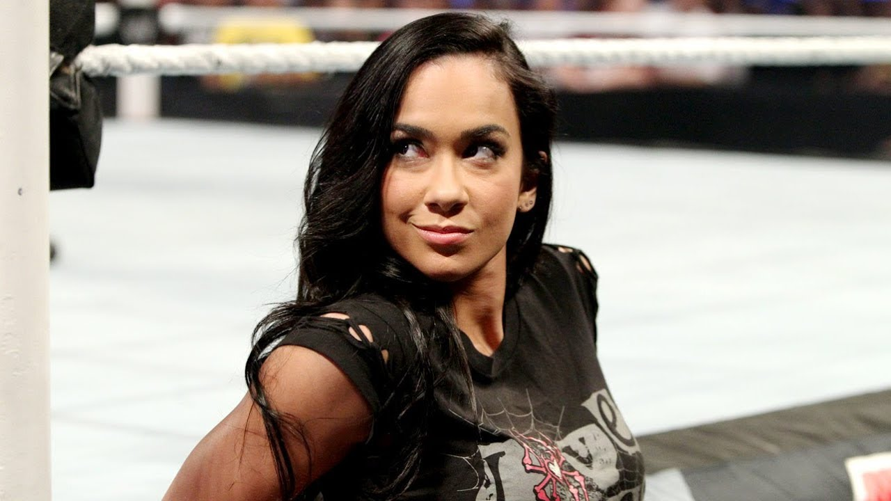 Aj Lee Youtube Channel