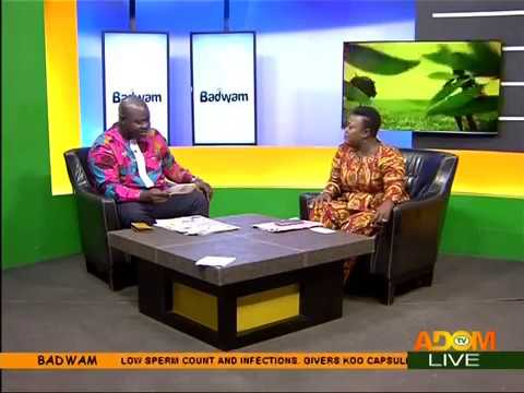 Badwam Newspaper Review on Adom TV (16-11-17)