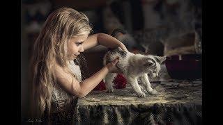 Кошачий дар...