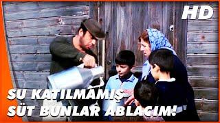 Turist Ömer Yamyamlar Arasında  Turist Ömer, Sütçü Oluyor  Türk Komedi Filmi