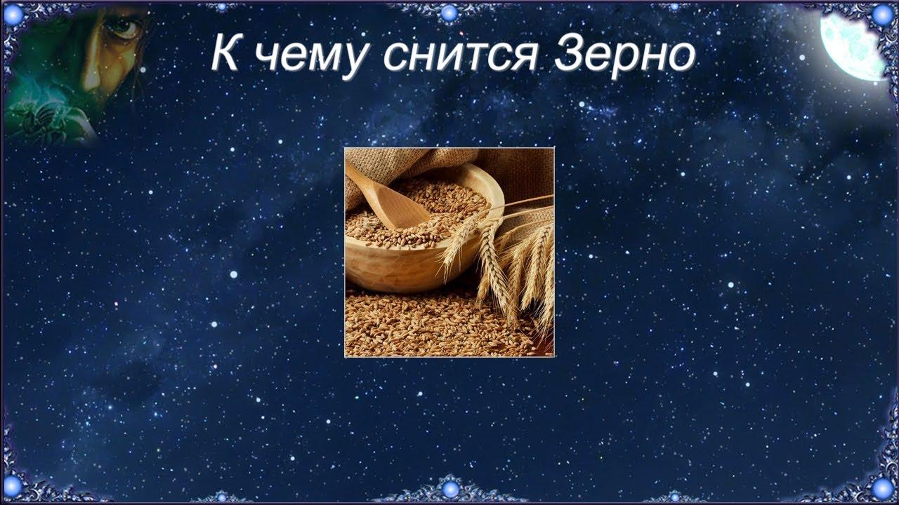 К чему снится Зерно (Сонник)