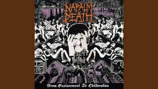 Provided to YouTube by Earache Records Ltd Musclehead · Napalm Deat...