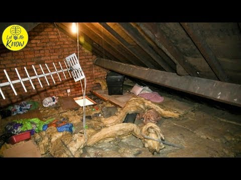 woman-finds-ex-living-in-her-attic,-12-years-after-their-breakup