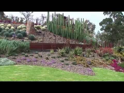 Arid Garden at the Royal Botanic Gardens Melbourne
