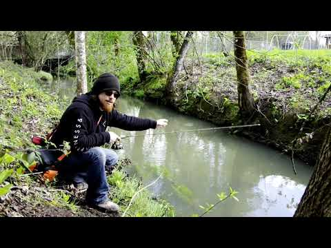 Fishing A Tiny Urban Creek!!