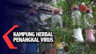 Surabaya, kompas.tv - warga kelurahan nginden jangkungan kecamatan sukolilo kota surabaya jawa timur memiliki cara tersendiri untuk menangkal virus corona, y...