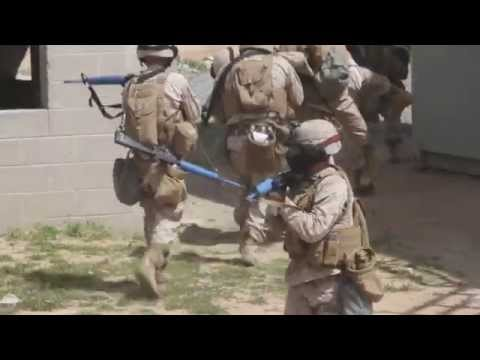Marines Conduct Squad Tactics Exercise
