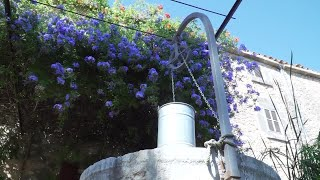 Presentación de la candidatura para que Mallorca sea Observatorio del Turismo Sostenible