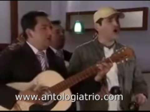 Antologia Trio - Serenata Telenovela Vecinos - Bogotá Colombia - Serenatas 24 Horas