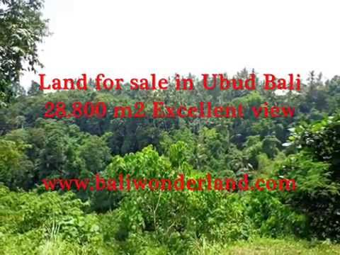PROPERTY FOR SALE IN BALI, amazing land for sale in Ubud Bali -- TJUB366