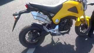 Honda MSX 125 Monkey Bike with IX Race Concept Designs Loud Race Exhaust