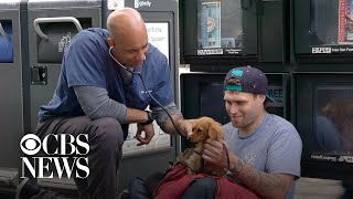 Veterinarian offers free checkups for homeless pets