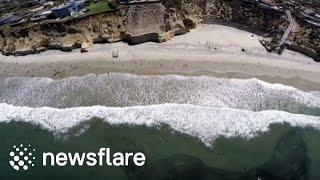 شاهد.. الأمواج تلقي بملايين من أسماك السردين إلى الشاطئ