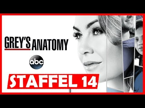 Wann kommt Greys Anatomy Staffel 14 in Deutsch auf Pro7 / Amazon Prime Video? | Serien News
