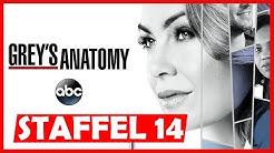 Wann kommt Greys Anatomy Staffel 14 in Deutsch auf Pro7 / Amazon Prime Video? | Serien News