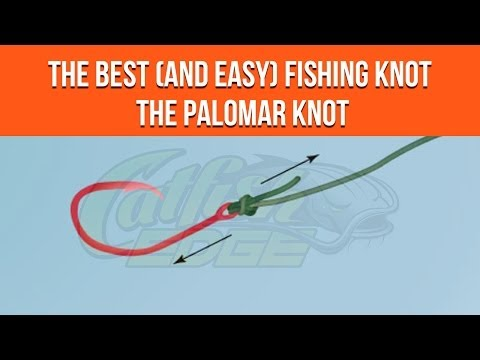 Four Fishing Knots Every Catfish Angler Should Know