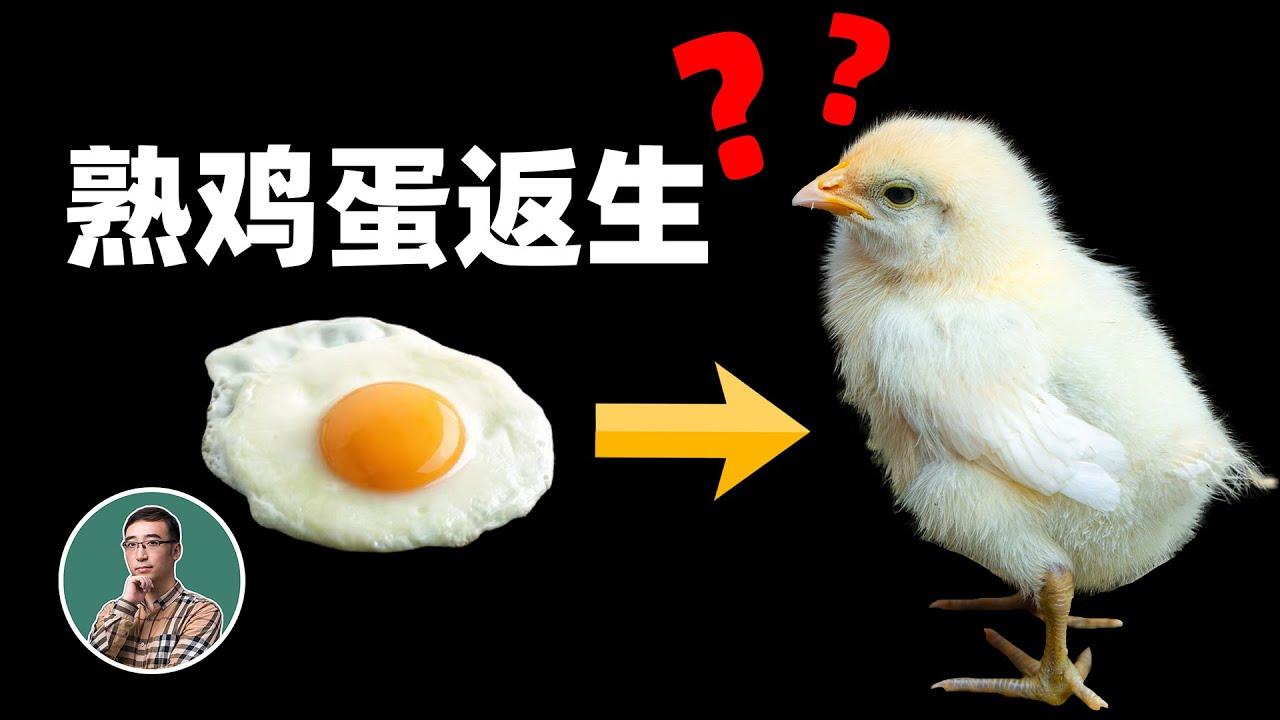"""熟鸡蛋返生有可能吗?这项研究得了""""诺贝尔奖"""""""