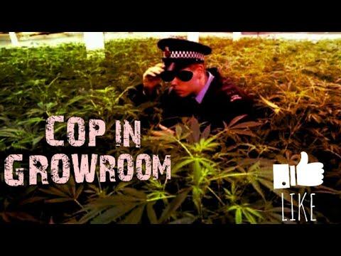 Police officer dance in growroom !! Funny cop Dance| police man smoke weed