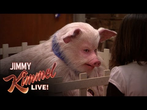 Jimmy the Pig
