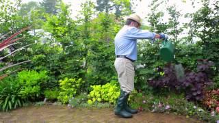 Corbis Motion - Home and Garden