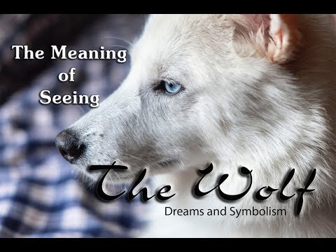 Totem Animals: Meaning Of Seeing Wolves In Dreams And Visions: Spirit Animals