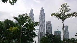 Asya kaplanı Malezya - target