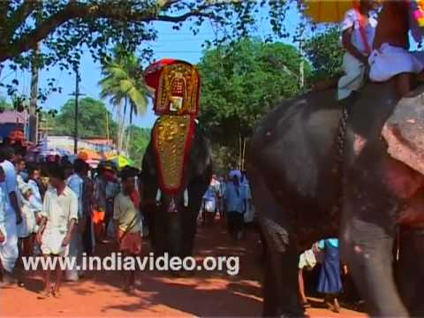 Elephant Pageantry at Anayadi Temple
