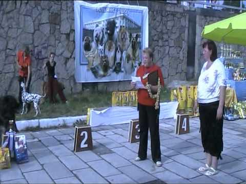 Альянс-шоу-2011 конкурс ветеранов