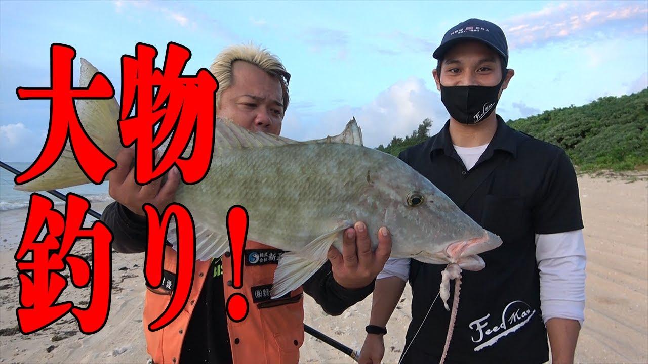 【沖縄】石垣島で大物釣り!!巨大魚が釣れる!
