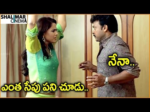 Chiranjeevi, Sameera Reddy || Telugu Movie Scenes || Best Comedy Scenes || Shalimarcinema thumbnail