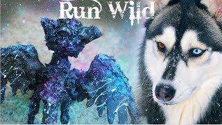 LPS Pet Mep ♦ Run Wild ♦