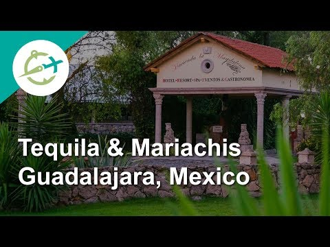 Travel to Guadalajara (GDL) with Destination WE