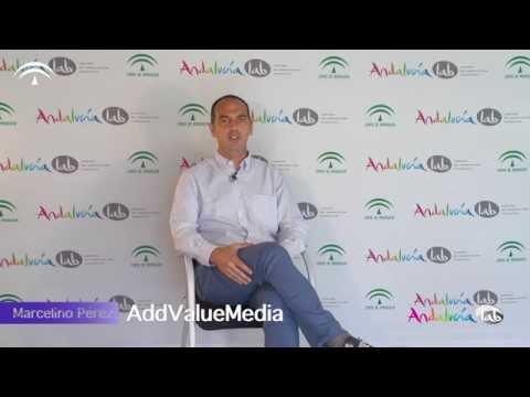 ¿qué-es-el-marketing-de-afiliación-y-cómo-funciona?
