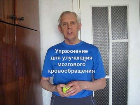 Упражнение для улучшения мозгового кровообращения Alexander Zakurdaev
