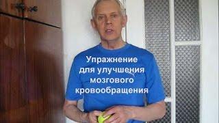 Фото Упражнение для улучшения мозгового кровообращения Alexander Zakurdaev