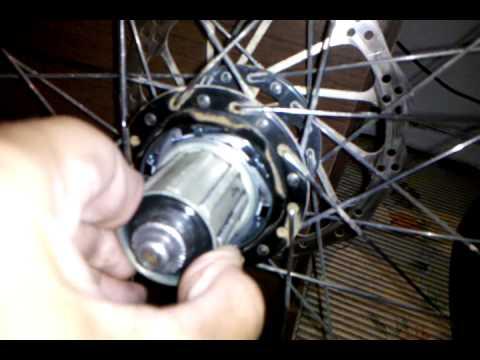 Bicycle Hub 10 Bearing American Classic 350 Wheel Rear
