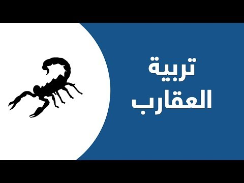 مصر: أعمال تجارية ناجحة في تربية العقارب  - نشر قبل 2 ساعة