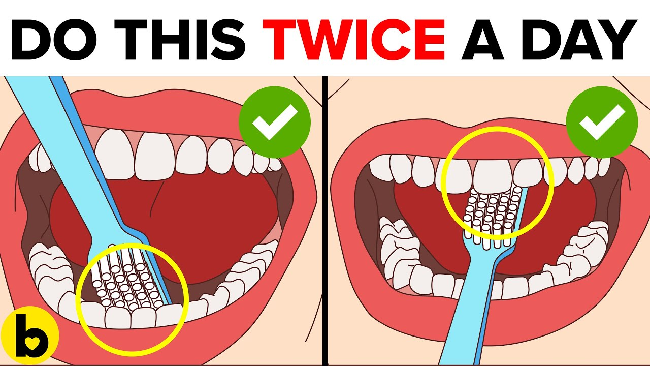 12 Tips To Give You A Healthy Gum & Teeth