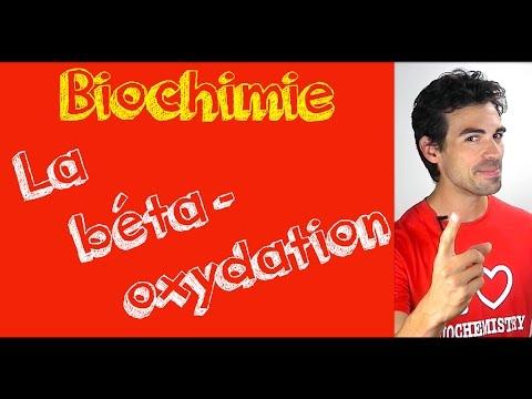 Cours de biochimie: Béta oxydation (l'essentiel).
