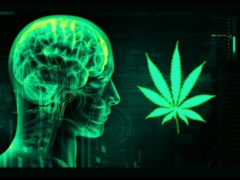 Cannabis Psychosis Is Real