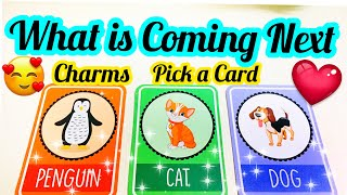 PICK A CARD-CHARMS- WHO IS COMING NEXT FOR YOU-  LOVE SINGLES- APKI NEXT RELATIONSHIP-- آپ کی شادی