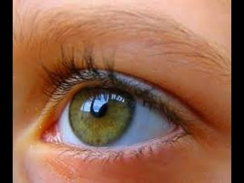 العين في المنام